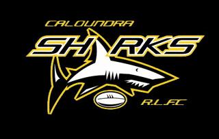 Caloundra Sharks teams