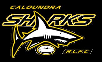 caloundra sharks